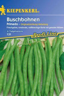Buschbohne 'Primado' - Kiepenkerl ®