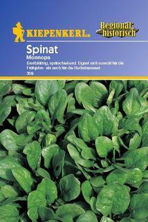 Spinat 'Monnopa' - Kiepenkerl ®