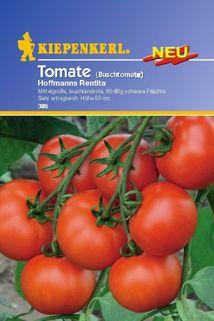 Tomate 'Hoffmann's Rentita' - Kiepenkerl ®