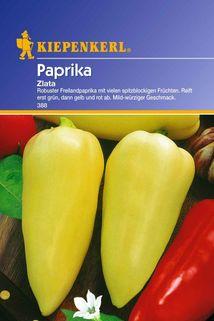 Paprika 'Zlata' - Kiepenkerl ®