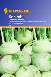 Kohlrabi Delikateß weißer - Kiepenkerl ®