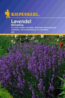 Lavendel - Kiepenkerl ®
