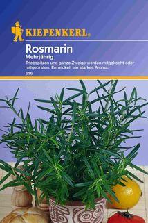 Rosmarin - Kiepenkerl ®
