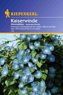 Ipomoea tricolor (Kaiserwinde) himmelblau - Kiepenkerl ®