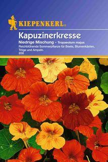 Tropaeolum (Kapuzinerkresse) niedrige Mischung - Kiepenkerl ®
