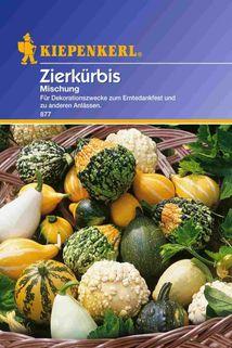 Zierkürbis Mischung - Kiepenkerl ®