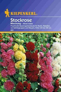 Alcea rosea (Stockrose) Mischung - Kiepenkerl ®