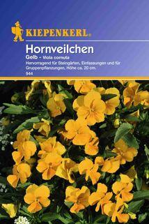 Viola cornuta (Hornveilchen) - Kiepenkerl ®