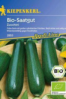 Bio-Zucchini, grün - Kiepenkerl ®