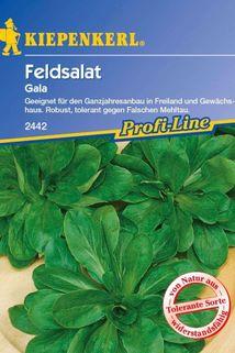 Feldsalat 'Gala' - Kiepenkerl ®