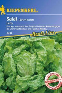 Bataviasalat 'Leny' grün - Kiepenkerl ®