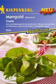 Mangold 'Charlie' - Kiepenkerl ®