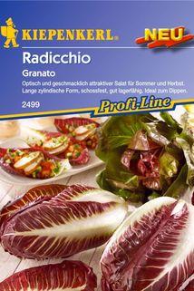 Radicchio 'Granato' - Kiepenkerl ®