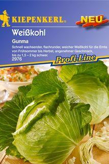 Weißkohl 'Gunma' - Kiepenkerl ®