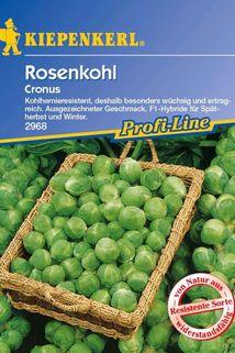 Rosenkohl 'Cronus F1' - Kiepenkerl ®