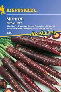 Möhre 'Purple Haze' - Kiepenkerl ®