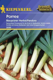Porree 'Pandora' - Kiepenkerl ®