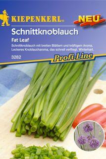 Schnitt-Knoblauch 'Fat Leaf' - Kiepenkerl ®