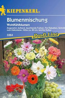 Blumenmischug 'Wohlfühlblumen' - Kiepenkerl ®