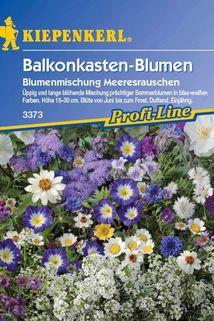 Balkonkasten-Blumen 'Meeresrauschen' (Blau & Weiß) - Kiepenkerl ®