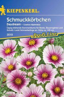 Schmuckkörbchen 'Daydream' - Kiepenkerl ®