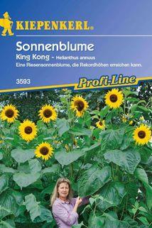 Sonnenblume 'King Kong' - Kiepenkerl ®