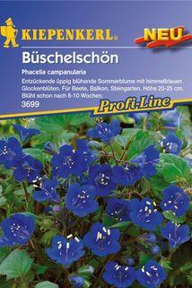 Büschelschön - Kiepenkerl ®