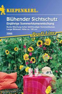 Blühender Sichtschutz - Kiepenkerl ®