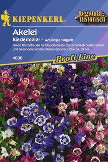 Akelei 'Biedermeier' - Kiepenkerl ®