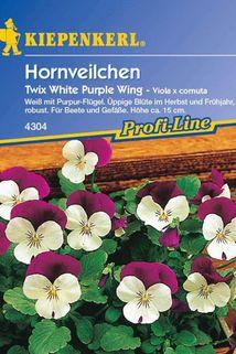 Hornveilchen 'Twix White Purple Wing' - Kiepenkerl ®
