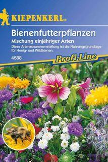 Bienenfutterpflanzen einjährig - Kiepenkerl ®
