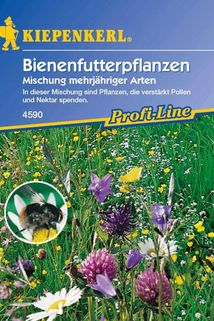 Bienenfutterpflanze mehrjährig - Kiepenkerl ®