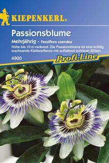 Passionsblume - Kiepenkerl ®