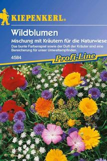Wildblumen-Mischung mit Kräutern für die Naturwiese - Kiepenkerl ®