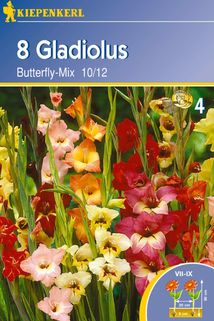 Gladiole 'Butterfly Mix' - Kiepenkerl ®