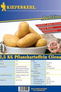 Pflanzkartoffel 'Cilena' - Kiepenkerl ®
