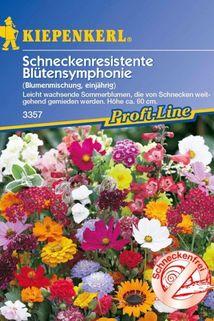 Schneckenresistente 'Blütensymphonie Mischung' - Kiepenkerl ®