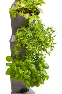 NatureUp! Basis Set Ecke - Gardena