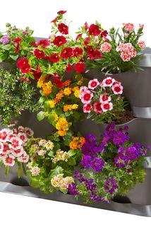NatureUp! Basis Set Vertikal - Gardena