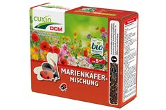 Cuxin DCM Blumensamen Marienkäfer-Mischung