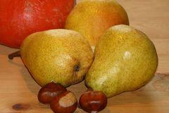 Herbstbirne 'Harrow Sweet'