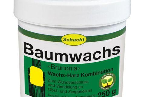 Baumwachs BRUNONIA - Schacht