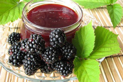 Brombeere 'Primocane Reuben' ® - Rubus fruticosus 'Primocane Reuben' ®