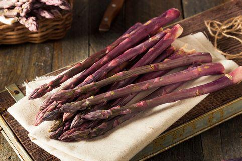 Gemüse-Spargel 'Pacific Purple' - Asparagus officinalis 'Pacific Purple'