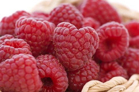 Himbeere 'Sanibelle' ® - Rubus idaeus 'Sanibelle' ®