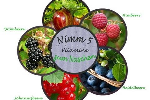 Beerenobst in 5 leckeren Sorten - Vitamine zum Naschen - Nimm 5!