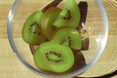 Kiwi 'Solo' - Actinidia deliciosa 'Solo'