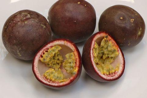 Passionsfrucht / Maracuja - Passiflora edulis