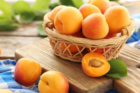 Säulen-Aprikose 'Armi-Col' ® - Prunus persica 'Armi-Col' ®