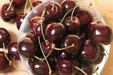 Süßkirsche 'Stella' / selbstfruchtend - Prunus 'Stella'